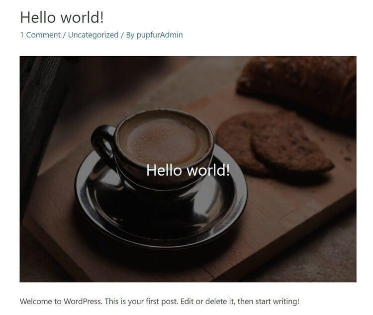 「Hello World」是 WordPress 預設的第一篇「文章」